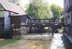 Funktionskontrolle der Fischaufstiegsanlage Mühle Bohle Düte