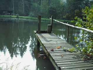 Thiener Mühlenbach – Beseitigung von Wanderhindernissen