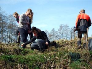 Pflanzaktion mit dem Waldpädagogikzentrum-DSC_1134